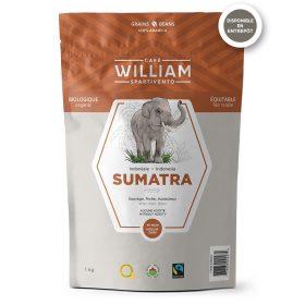 Sumatra 1kg whole beans
