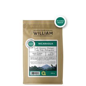 Nicaragua 300g grains